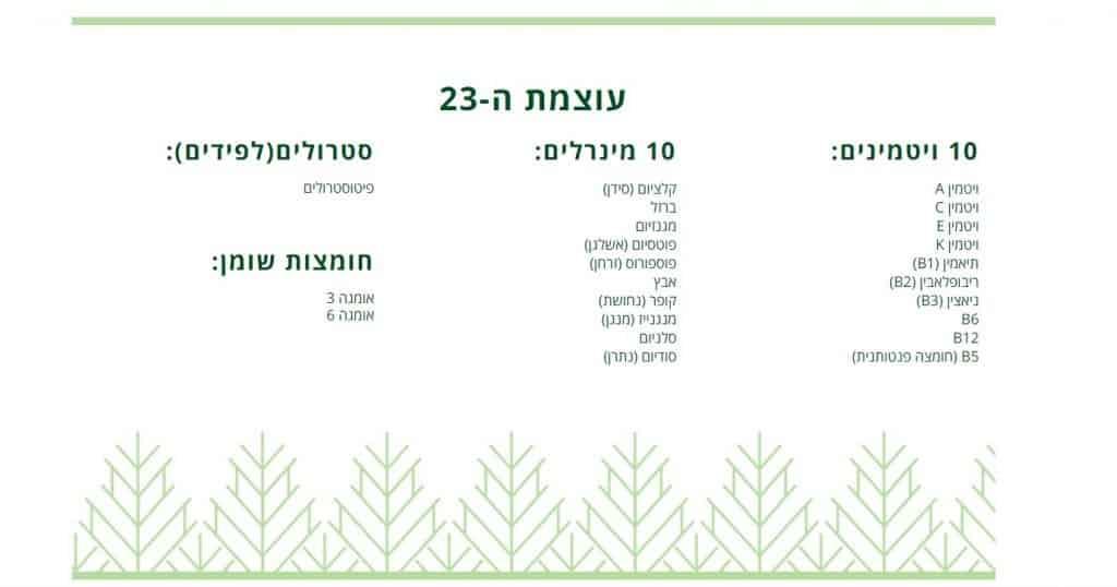 מושלמת - HOUSE OF BEAUTY - מכון יופי בתל אביב - מוצרי חוה זינגבוים